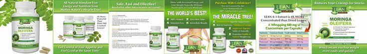 Moringa Oleifera - http://leannutraceuticals.com/moringa-oleifera/