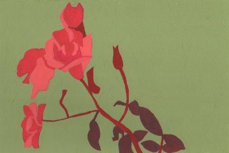 冬のバラ。