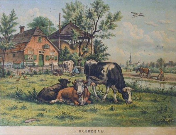Google Afbeeldingen resultaat voor http://home.tiscali.nl/vanderwinkellog/Oude%2520schoolplaten/slides/De%2520boerderij.jpg