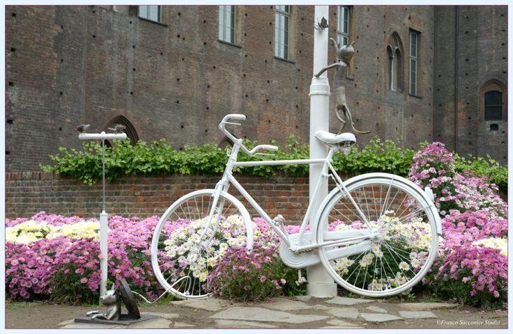 #Torino Piazza castello #bike