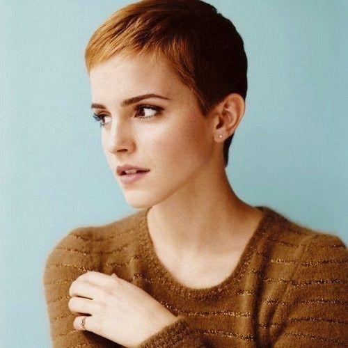 The Power Of The Pixie Cut | 20 iconic pixie cuts - motivation to cut it all off!