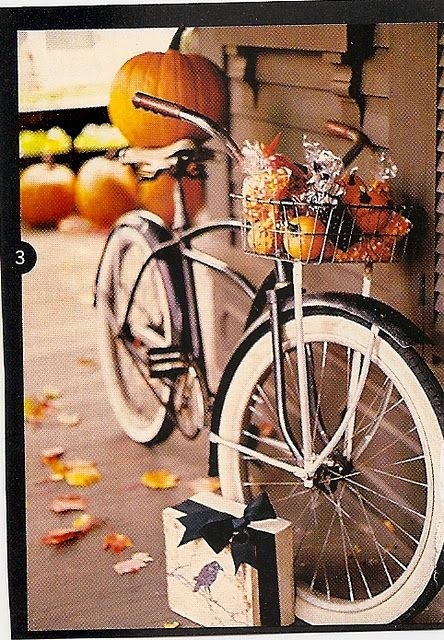 oh my goodness!  the perfect bike display for fall!
