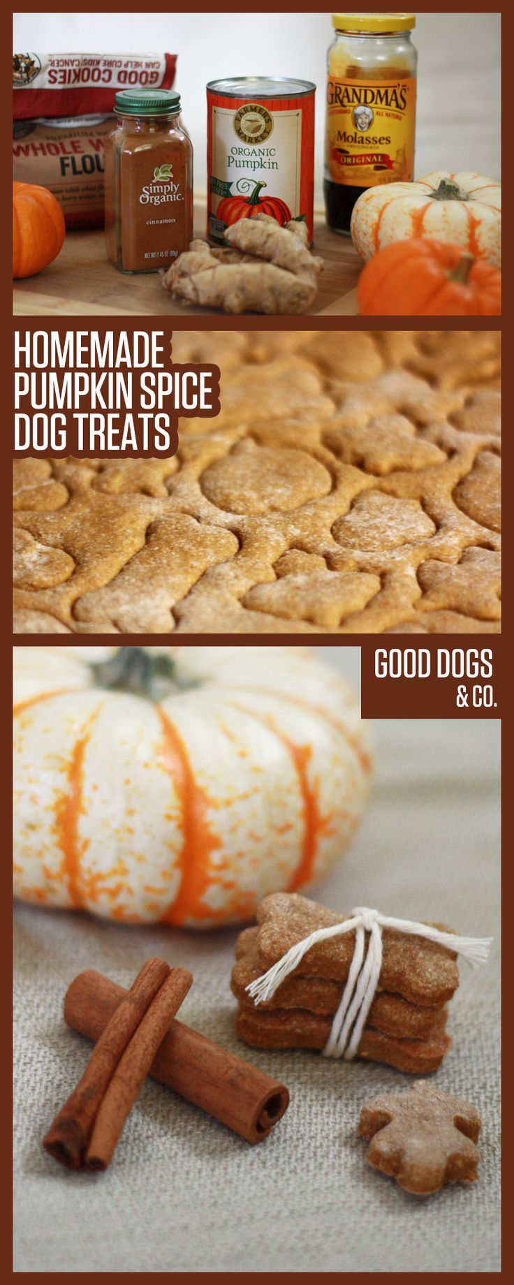 Pumpkin Spice Dog Treats just in time for PSL Season — that is, give your pup these treats while you enjoy your Pumpkin Spice Latte!