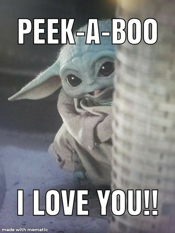Pin By Julie Presnell On This Is The Way Yoda Funny Yoda Pictures Yoda Images