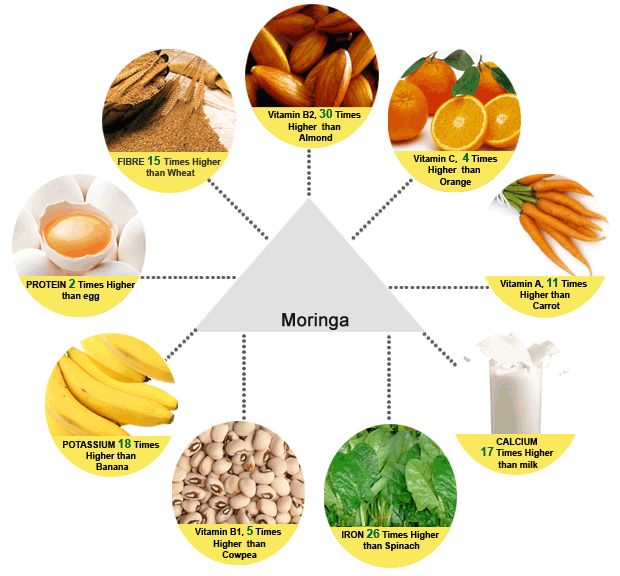 the world s most nutritious tree moringa leaf contains