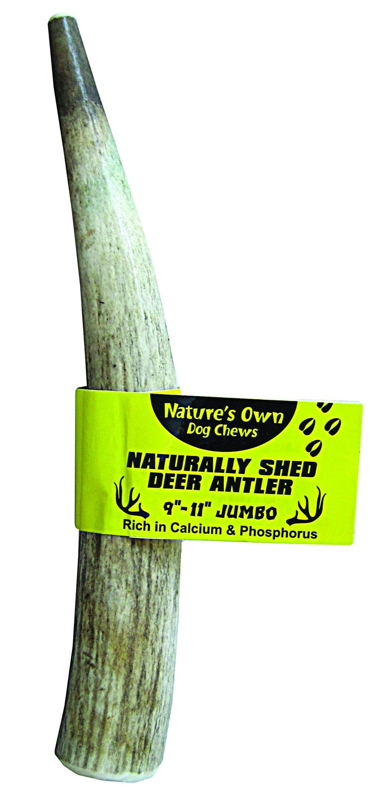 Nature' S Own Naturally Shed Elk Antler Dog Chew