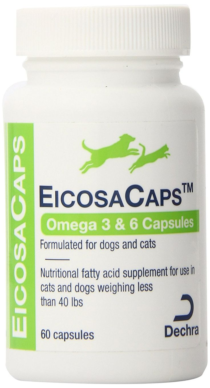Dechra 60 Capsules EicosaCaps Fish Oil Nutritional Supplements for Dogs and Cats Up to 40-Pound -- You can find more details by visiting the image link.
