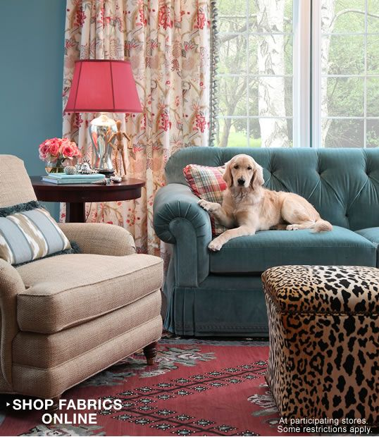 I'm kind of loving the color scheme of this room, particularly the teal sofa.. and the dog is cute too!