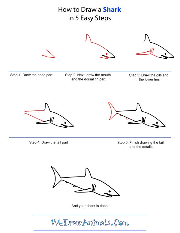 9 best directed drawing sharks images on Pinterest ...