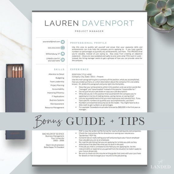 Resume Template For Word Pages Cv Template Modern Resume