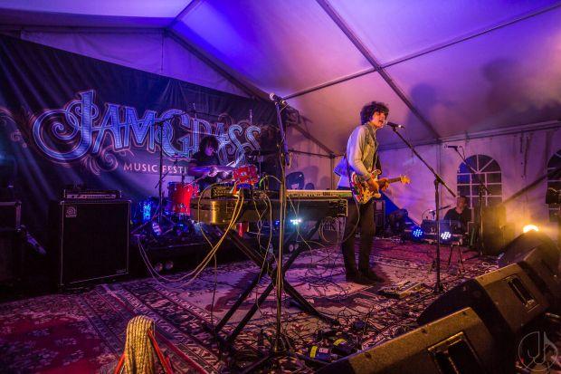 Bluesfest 2016 Roster Grows