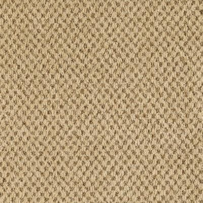 Living Room:  Looks like a Sisal type rug.  SoftSpring Sumptuous II - Color Gobi Beige 12 ft. Carpet - 0327D-37-12 at The Home Depot.  12' wide, $3.18 sq. ft./$28.62 sq. yd. - 9 ft. Nylon, scotch guard, lifetime wty re stains  Love the warmth of the color and yet it's not orangey.