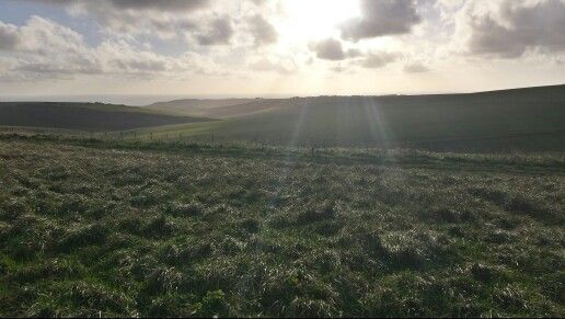1/11/2014 Ray of sunlight over the Downs.