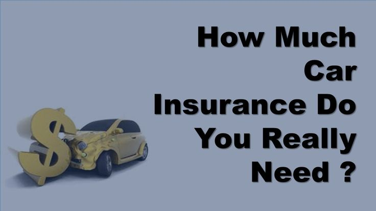 (adsbygoogle = window.adsbygoogle || []).push();            (adsbygoogle = window.adsbygoogle || []).push();  How much car insurance do you really need? Money under 30. How much car insurance do you need? Personal finance wsj how really Daveramsey. Car insurance buy online...