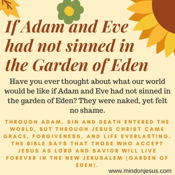 Have you ever thought about what our world would be like if Adam and Eve had not sinned in the garden of Eden? They were naked, yet felt no shame.