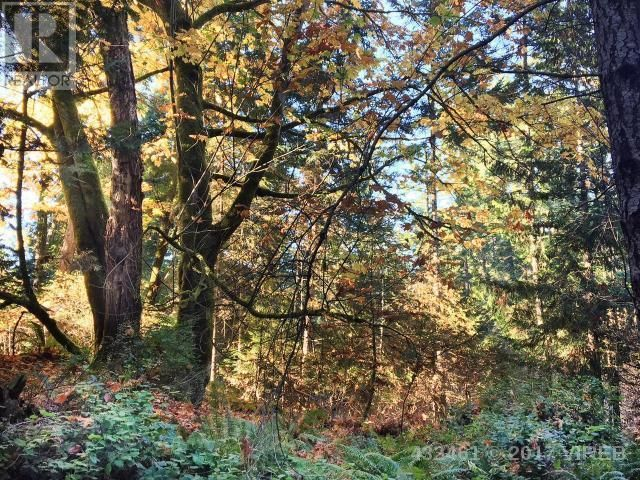 6127 EAST ROAD - MLS #432461 - $345000 - DENMAN ISLAND, BC Gulf Islands | Build your dream home on this 11.23 acre parcel of park - like land, on Denman Island's quiet south end. Privacy, quiet solitude and miles of nature await.
