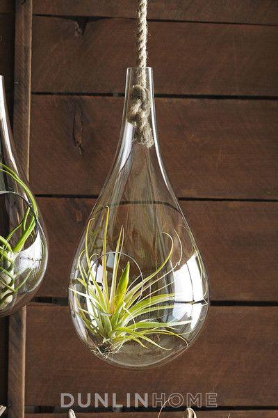 Elegant Hand Blown Glass Hanging Terrarium With Sisal Rope Part 30
