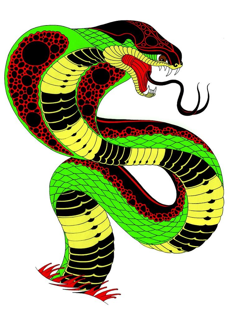 King Cobra Snake Tattoo Flash | Cobra Tattoos | Pinterest ...