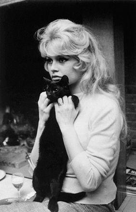 Brigitte Bardot と黒猫