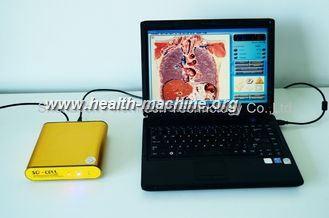 awesome Terapia del analizador de la salud de las idiomas 3D NLS de la eficacia 8 para la condición física humana
