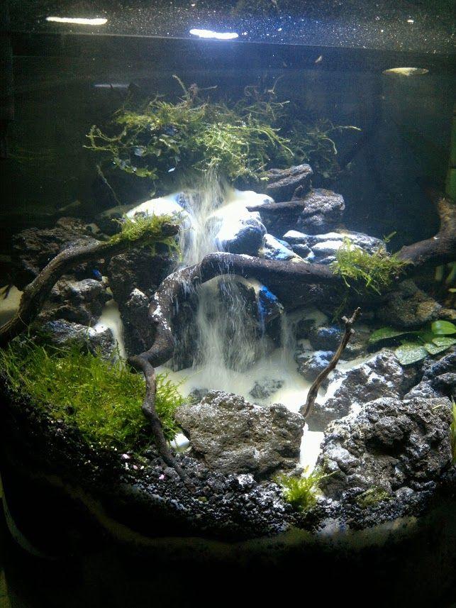134 best Aquascaping norm images on Pinterest Aquarium ideas