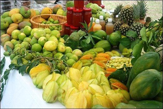 Best Restaurants For Calamari West Island