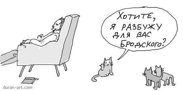 Бродский vs кот