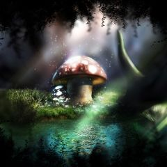 Fantasy Forrest #redrawkeyboard Wallpaper - magical mushroom house in the forest