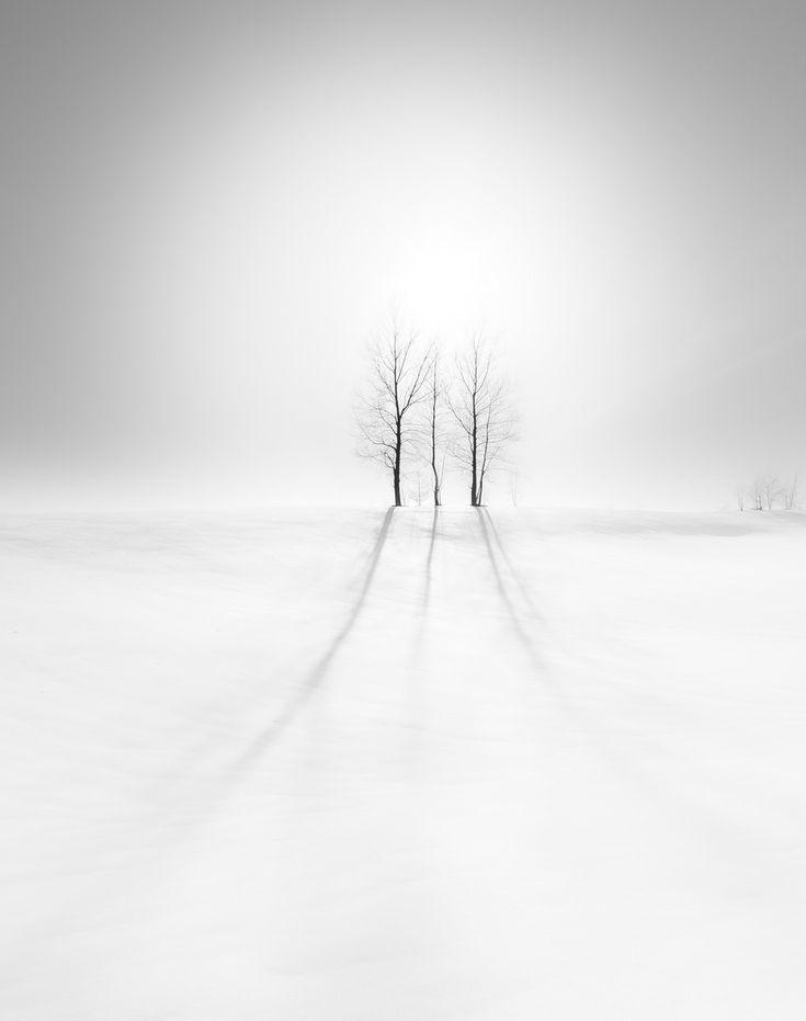 Lines | Mitsuhiko Kamada, 500px
