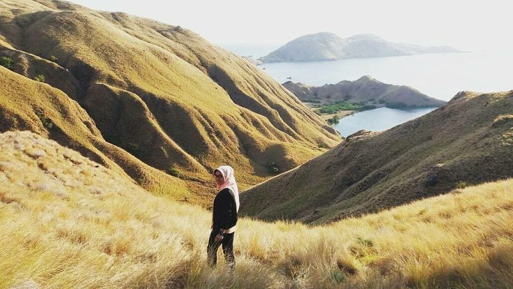 How you ever been somewhere that leaves you speechless? Komodo Island is one of those places.  Next Trip Sailing Komodo (3D2N)  27 – 29 Oktober 24 – 26 Nopember  30 Nopember – 2 Desember  22 – 24 Desember  Only 2,195,000 per pax . . For details / reservation / private trip arrangement please mail to tuk4ng.jalan@gmail.com or visit our website www.tukangjalan.com . . Whatsapp 087808116852 / 085810697553 Line : @tukangjalan  Ig : @tukang_jalan  Twitter : @tukang_jalan . #tukangjalan…