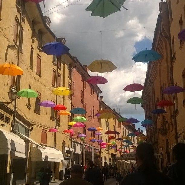 Ferrara #festa #colori #ombrelli