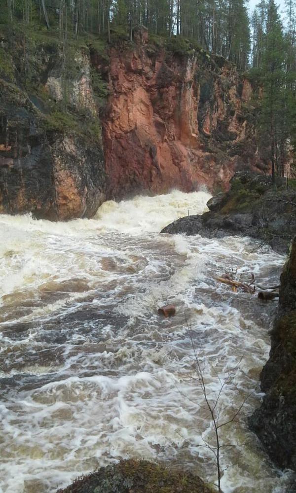 Kiutaköngäs, Oulankajoki, Kuusamo, Oulangan kansallispuisto.   Kiutakönkään kuohuja kevättulvassa 14.5.2015, kuvan otti Pirkko Määttä