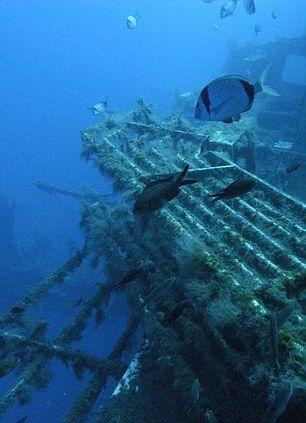 Zenobia ship wreck in Larnaca Cyprus - a fantastic dive