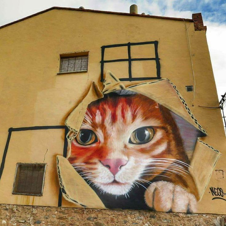 1638 best streetart images on pinterest - Tuco zaragoza ...