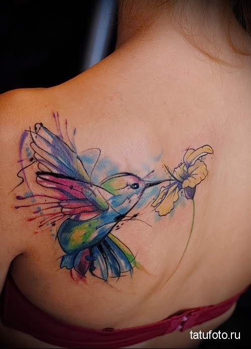 hummingbird tattoo watercolor 3