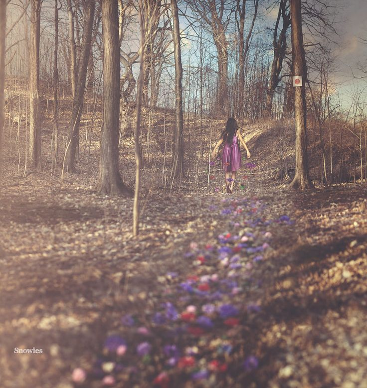 Spring is in the Air by Karen M on 500px