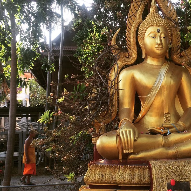 Temple à Amphawa #Bangkok #Thailande #Buddha