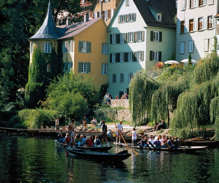 Lovely T bingen punting on the river Neckar