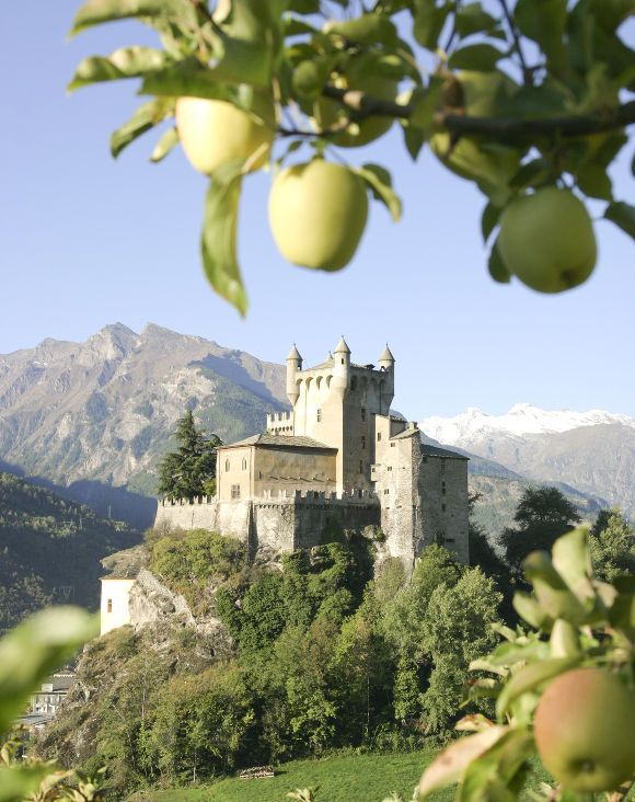 Il castello di Saint-Pierre, circondato da meleti - Aosta Valley, Italy © Cofruits | www.viamondo.net | #ValleDAosta #Italia #Aostatal #Italien