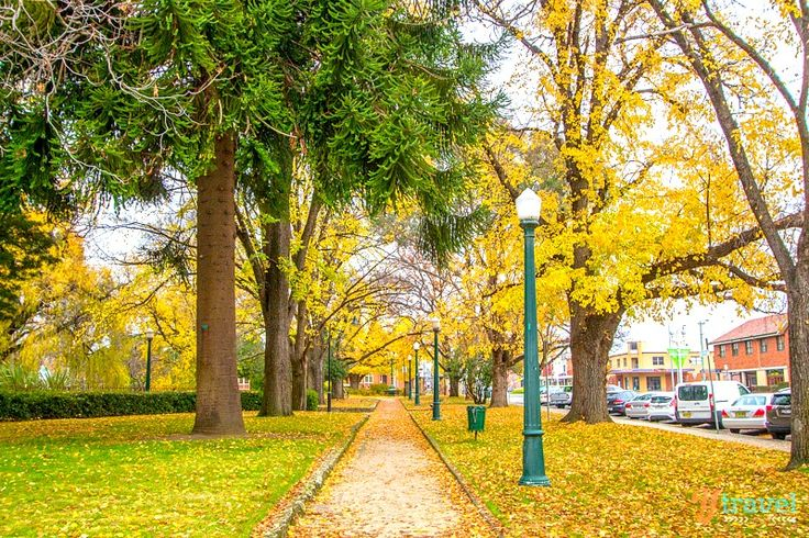 Autumn in Bathurst, NSW, Australia