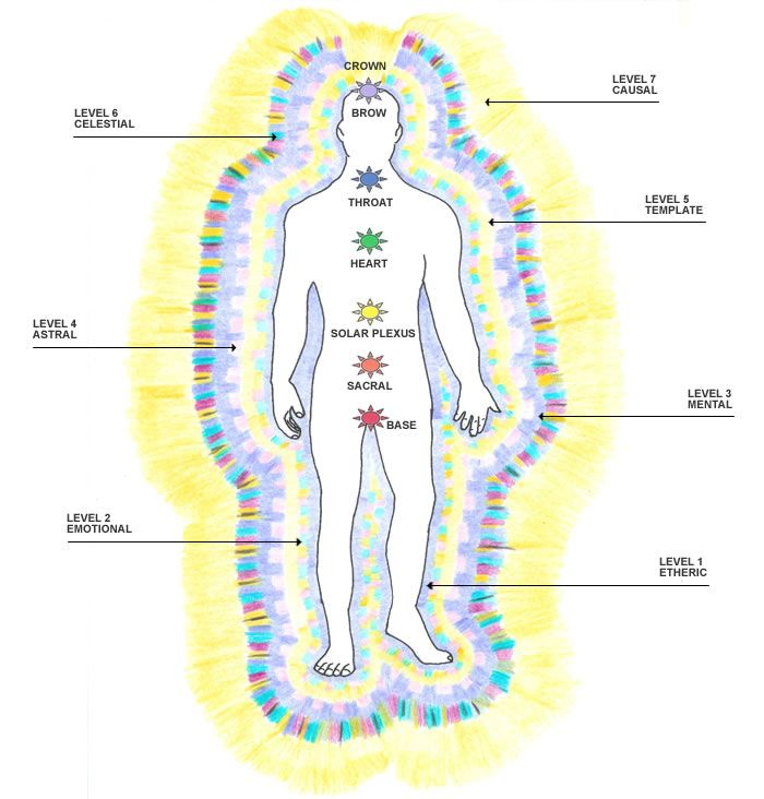 energy and human body | The Seven Levels of the Human ...