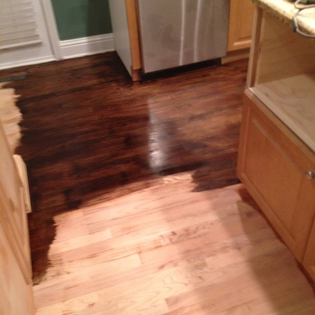 Applying Minwax Jacobean Stain To Sanded Floor In Kitchen