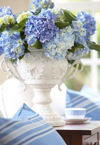 Blue hydrangea in beautiful white container with white bird and glass voltive candle & sand dollars on book by chair table