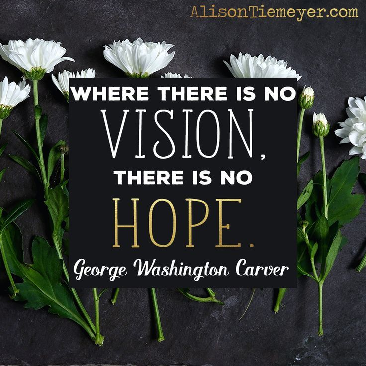 """Where there is no vision, there is no hope."" - George Washington Carver 