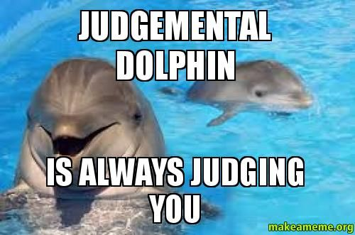 dolphin memes | makeameme org make meme upload image browse newest meme types blog ...