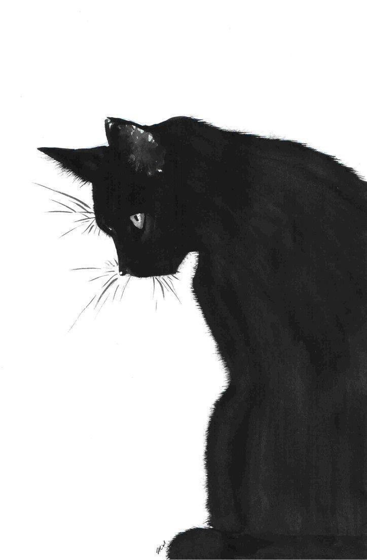 Was wäre der Oktober ohne die Kunst der schwarzen Katze?   – Drawing References… – Katzen