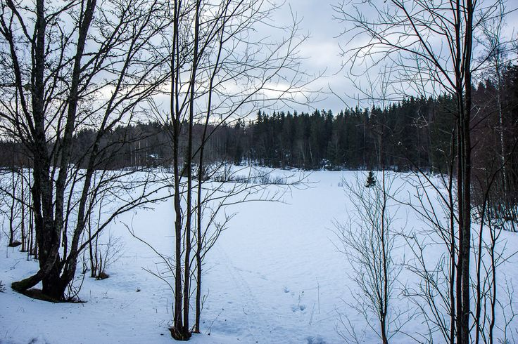 Winter in the outdoors near Espoo in Finland