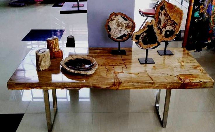 Petrified Wood Art Craft