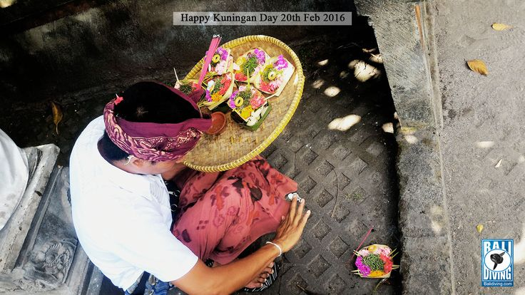 The ceremonies should be completed before the sun sinks to the west (before noon) because by then the Gods and Pitara will have returned to their respective kahyangan or heavens in the invisible world of niskala.  #balidivingteam #happykuninganday #tumpekkuningan #balineseculture #theholyceremony #bali #indonesia www.balidiving.com