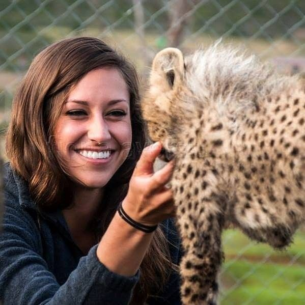 One of our wildlife research unit interns scratches the chin of a baby cheetah #OnlyinAfrica